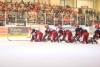 Saale Bulls siegen verdient mit 6:3 gegen die Hammer Eisbären
