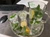 Gesundes Trinken am Arbeitsplatz: So kann man sein Trinkverhalten verbessern