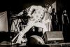 Elvis!! - mehr braucht man einem Fan nicht zu sagen - muss leider aus produktionstechnischen Gründen abgesagt werden!