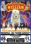 """Gebrüder Wille und Ihre Neue Show """"New Young Generation"""" in Weißenfels - Verlosung von Eintrittskarten"""